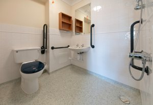 Care Home Wet Room - note loo seat!